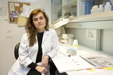 Mercè Correa es coautora del artículo junto a John D. Salamone. Imagen: UJI.