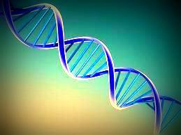 Descubierto un gen responsable del trastorno de pánico