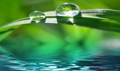 Mindfulness y Psicología beneficios de su práctica durante la terapia